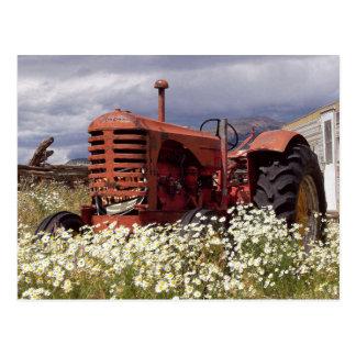 Trator de fazenda do vintage no cartão da foto do cartão postal