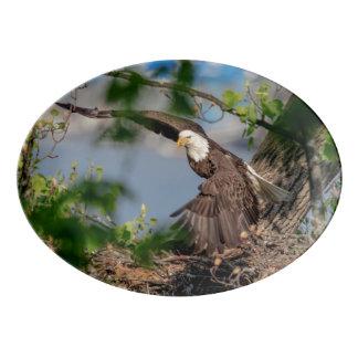 Travessa De Porcelana Águia americana que sae do ninho