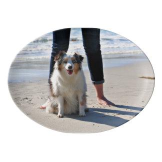 Travessa De Porcelana Bennett - mini australiano - Rosie - praia de