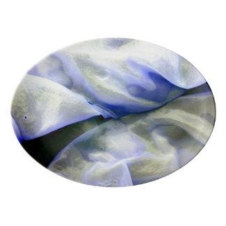 Travessa De Porcelana Branco abstrato bonito e azul da natureza