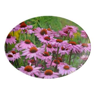 Travessa De Porcelana Flores cor-de-rosa do echinacea
