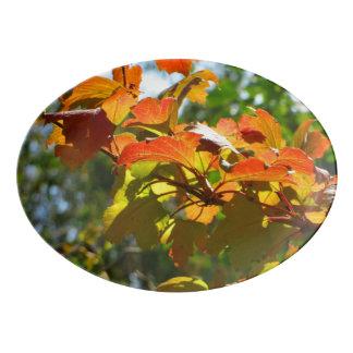 Travessa De Porcelana Folhas de outono
