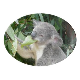 Travessa De Porcelana Koala que come a folha da goma
