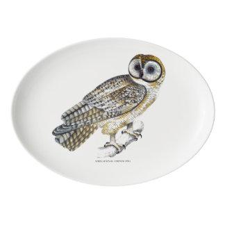 Travessa De Porcelana Placa chinesa da coruja