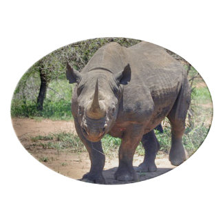 Travessa De Porcelana rinoceronte