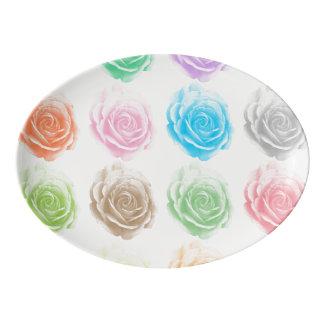 Travessa De Porcelana Teste padrão colorido dos rosas