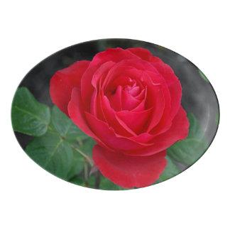 Travessa De Porcelana Única rosa vermelha