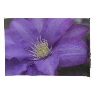 Travesseiro da videira da flor do Clematis roxo