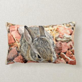 Travesseiro decorativo do coelho do bebê de almofada lombar