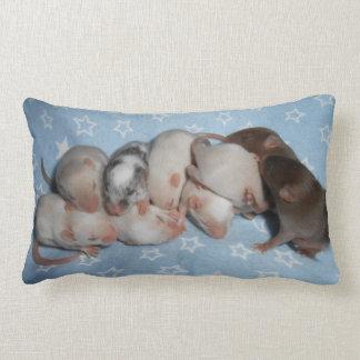 Travesseiro lombar:  Ratos do bebê Almofada Lombar