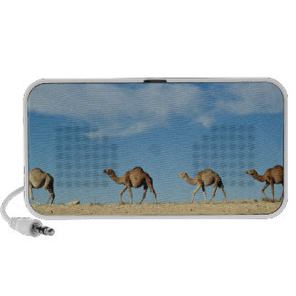 Trem do camelo caixinhas de som de viagem