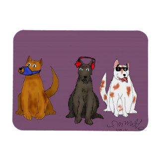 Três cães obedecem o ímã