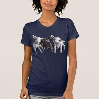 Três carneiros insolentes engraçados camiseta