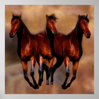 Três cavalos em um poster