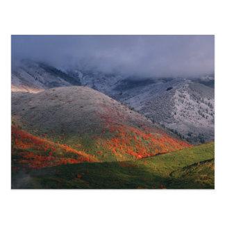 Três estações da folha, de bordos vermelhos e de cartão postal