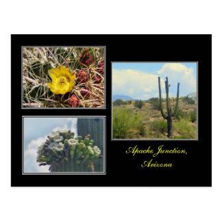 três fotos do cartão da arizona da junção de