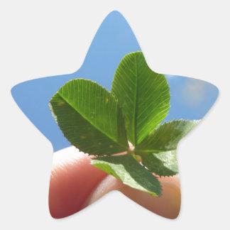 Trevo de quatro folhas adesito estrela