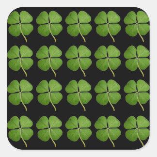 Trevo do trevo de quatro folhas adesivo quadrado