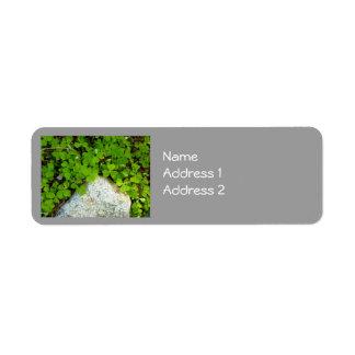 Trevo & pedra etiqueta endereço de retorno