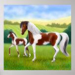 Tri cavalo da pintura e poster coloridos do potro