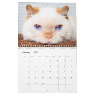 Trident 2017 o calendário do gato