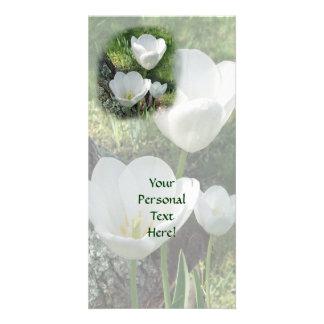 Trio branco da flor das tulipas cartão com foto personalizado