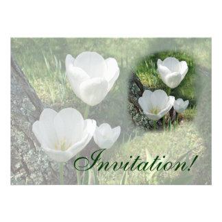 Trio branco da flor das tulipas convite