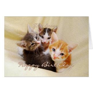 Trio do feliz aniversario do neto dos gatinhos cartão comemorativo