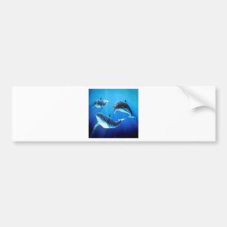 Trio dos golfinhos adesivo para carro