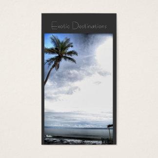 Tropical exótico do cartão de visita da agência de
