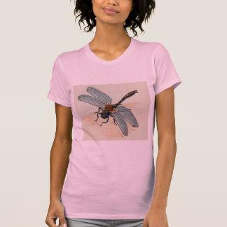 Tshirt da libélula