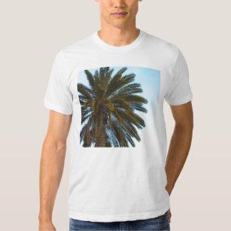 tshirt da palmeira