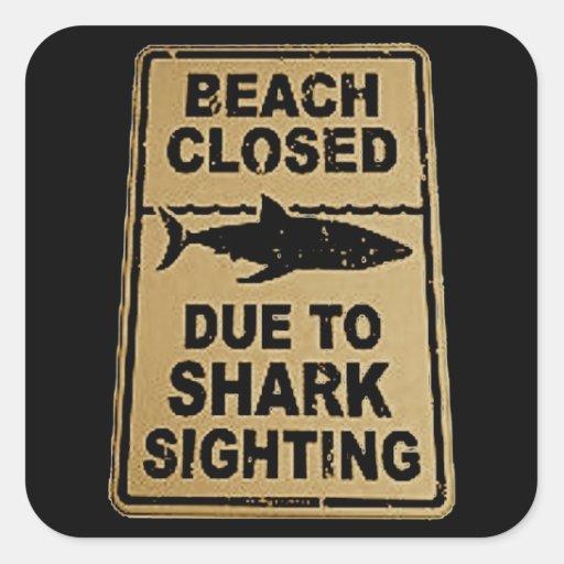 tubarão manchado adesivo quadrado