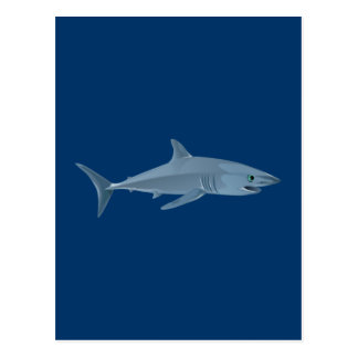 Tubarão shark cartao postal