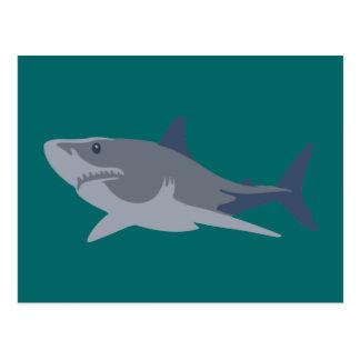 Tubarão shark cartões postais