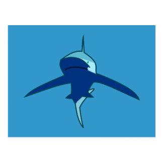 Tubarão shark cartoes postais