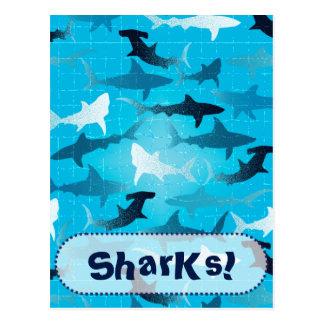 tubarões! cartão postal