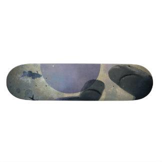 tubarões do skate