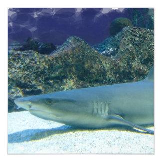 Tubarões no convite do recife de corais