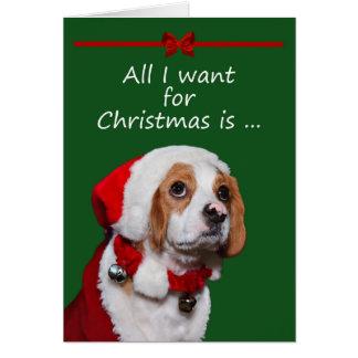 Tudo que eu quero para o cartão do Natal