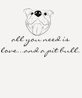 Tudo que você precisa é amor e uma camisa do t-shirt