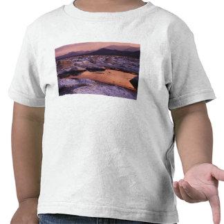 Tufos cobertos de neve camisetas