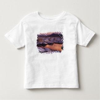 Tufos cobertos de neve tshirt