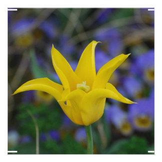 Tulipa amarela perfeita convite