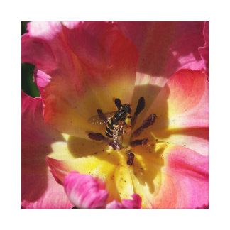 Tulipa com Hoverfly, cópia das canvas