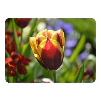 Tulipa vermelha e amarela convite 12.7 x 17.78cm