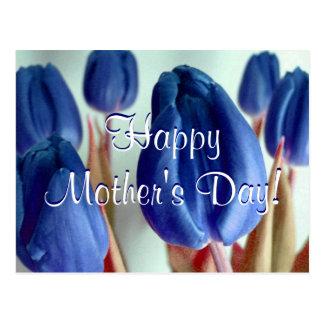 Tulipas azuis do dia das mães feliz