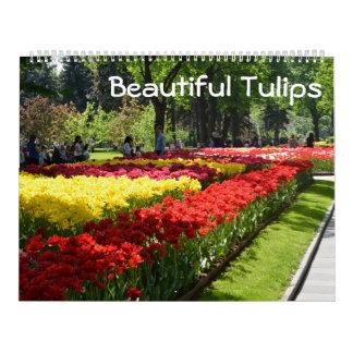 tulipas bonitas de 12 meses calendário
