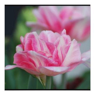 Tulipas cor-de-rosa bonito convite personalizados