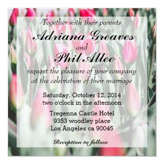 Tulipas vermelhas e cor-de-rosa, campo de flor no convite quadrado 13.35 x 13.35cm